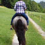 Vom Pferd aus die Natur genießen