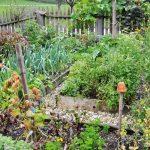 Bauerngarten am Urlaub am Bauernhof Kaspergut im Innviertel