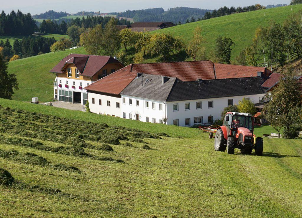 Urlaub am Bauernhof Löschgruberhof Mühlviertel