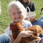 Zahmes Huhn Urlaub am Bauernhof Löschgruberhof Mühlviertel