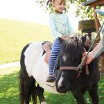 Ponyreiten Urlaub am Bauernhof Löschgruberhof, Mühlviertel