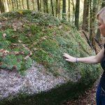 Natur begreifen Urlaub am Bauernhof Löschgruberhof Mühlviertel