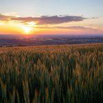 Sonnenuntergang am Urlaub am Bauernhof Hochhubergut