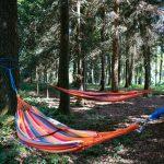 Hängematten im Wald am Urlaub am Bauernhof Grafhaidergut (c) Heinisch Gollner